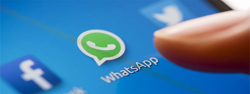 vender whatsapp